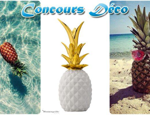 Concours decoration ananas